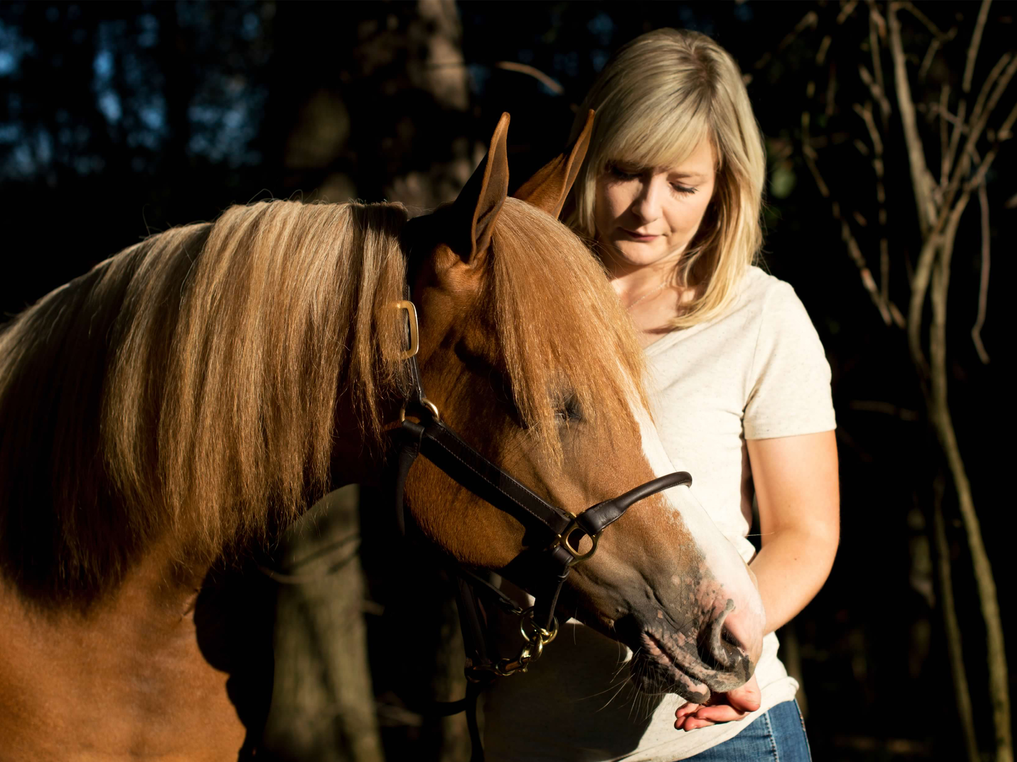 A woman stand beside her horse on a warm evening.
